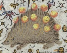 The miniature shows a hedgehog with grapes on its quills inhabiting the foliate margins of this folio. From the Book of Hours of Charlotte of Savoy created in Paris, France, in the 15th century. New York, The Pierpont Morgan Library, Ms. M. 1004, fol. 82v.