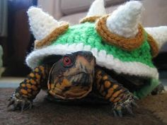 Crocheted Bowser Sweater Turns Your Turtle into King Koopa. My sister wants me to make this for her.