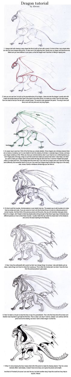 Dragon Tutorial by alecan.deviantart.com on @deviantART