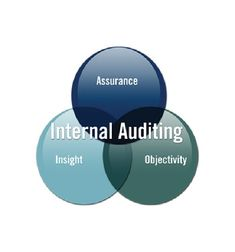 Our internal audit services can be classified into below cited categories:  Internal Audit of Compliance Internal Audit of Accounts & Finance Internal Audit of Taxation Internal Audit of Fixed Assets Internal Audit of Sales / Revenue Internal Audit of Human Resource Internal Audit of Transport Management Internal Audit of Purchase & Inventory Internal Audit of Business Processes Internal Audit of Retail Management Internal Audit of Distribution Fixed Asset, Internal Audit, Human Resources, Accounting, Insight, Finance, Management, Retail