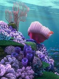 Sometimes I wonder if people think this is a genuine image from the coral reef, it's actually a screen image you can pick on the Finding Nemo DVD ;)