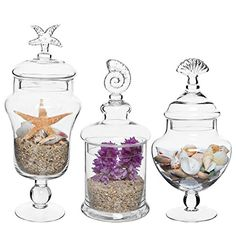 Set of 3 Seashell Handle Clear Glass Apothecary Jars / Food Storage Canisters / Decorative Centerpieces -- Find out more details by clicking the image : Home Decorative Accessories Storage Canisters, Jar Storage, Food Storage, Glass Apothecary Jars, Glass Bottles, Mason Jars, Perfume Bottles, Terrarium Jar, Hanging Vases