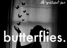 Butterflies.  second chances...