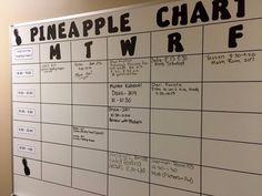 How Pineapple Charts Revolutionize Professional Development | Cult of Pedagogy