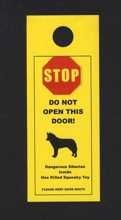 Dangerous Siberian Husky Inside  Has Killed Squeaky by KnobNots