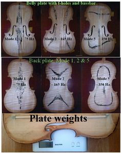 Ole Bull, Cello Stand, Show Plates, Violin Family, Violin Makers, Old Benches, Electric Violin, Speed Of Sound, Resin Furniture