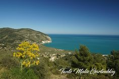 Gargano Places To See, Mountains, Nature, Travel, Wheat Fields, Mural Painting, Old Town, Travel Advice, Places