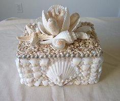 'magnolia' shell box//Seashell home decor