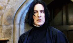 "My second favorite was Severus Snape! We Know Your Fave ""Harry Potter"" Character Based On Your Favorite Kitten Harry Potter Severus Snape, Harry Potter Gif, Alan Rickman Severus Snape, Harry Potter Characters, Harry Potter Universal, Harry Potter World, Draco Malfoy, Hermione Granger, Professor Severus Snape"