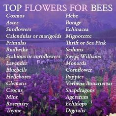 Top Flowers for bees