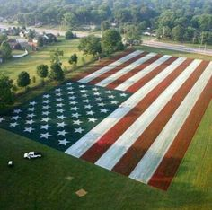 Patriotic Lawns and Landscapes on Independence Day, Fourth of July: See how they do patriotic landscape design for the holiday of July American Pride, American History, American Flag, American Freedom, Image American, American Spirit, American Soldiers, I Love America, God Bless America