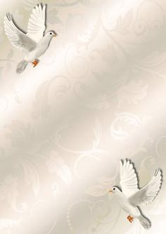 A4 Background Sympathy on Craftsuprint designed by Marijke Kok - A4 Background Sympathy with a dove , beautiful... - Now available for download!