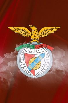 Download Android App Benfica Wallpapers HD for Samsung  Android 640×960 Benfica Wallpapers (33 Wallpapers)   Adorable Wallpapers