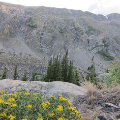 McCollough Gulch Trail