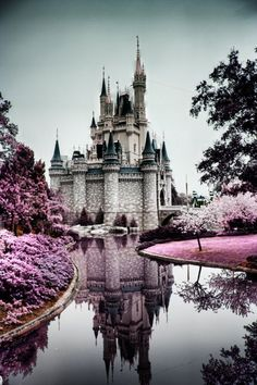 simply SPLENDID castle reflection in water pink