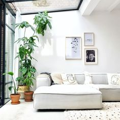 Verbouwen of verhuizen? In de huidige huizenmarkt kiezen we allemaal toch snel voor verbouwen en aanbouwen. Zoek jij een effectieve manier voor meer m2 in jouw woning? Kies dan voor stalen serre als aanbouw. Met al het glas in de pui en een glazen dak krijg je een enorme hoeveelheid licht binnen. Je woning wordt niet alleen groter met deze glazen aanbouw, maar lijkt ook nog eens veel groter! Dit project hebben we gerealiseerd bij Silke Interieurdesign. #serre #glazendak #aanbouwen…