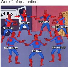 Week 3 of quarantine is upon us and the only thing keeping us from going insane are memes, tiger king, and zoom meetings. Stay home, wash your hands, and scroll through the funniest memes from the past week cause we all know there's nothing better to do. Memes Humor, True Memes, Jokes Quotes, Stupid Funny Memes, Funny Relatable Memes, Fuuny Memes, Funny Gifs, Funny Stuff, Rasengan Vs Chidori