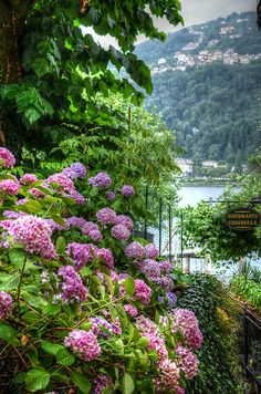 allthingseurope:  Stresa, Italy. (by Mento ITA.)