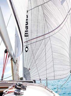 Sailing | beautiful | dD