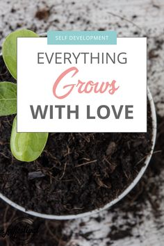Everything grows with love, including you. Try these simple changes to maximize your growth and learn to love yourself more. It can be simpler than you think. Think Positive Quotes, Positive Vibes, Self Care Bullet Journal, What Is Work, Learning To Love Yourself, Teaching Writing, Love You More, Self Development, Mindset