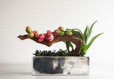 Double tulips and driftwood design