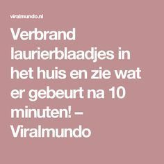 Verbrand laurierblaadjes in het huis en zie wat er gebeurt na 10 minuten! – Viralmundo Health And Beauty, Health And Wellness, Health Tips, Health Fitness, Relax, Listerine, Anti Stress, Good To Know, Cleaning Hacks
