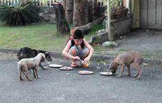 Dieser 9-jährige Junge füttert die heimatlosen Tiere. Das Kind hat wirklich ein Herz aus Gold, oder? | unfassbar.es