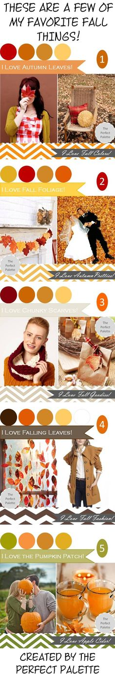 These are a Few of My Favorite Fall Things! http://www.theperfectpalette.com/2012/10/fall-favorites-part-2.html