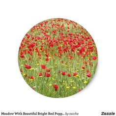 Meadow With Beautiful Bright Red Poppy Flowers Classic Round Sticker USE CODE: ZSUNSTEAL176 #50%Off Stickers #Meadow With Beautiful Bright #Red #Poppy #Flowers Classic Round Sticker https://www.zazzle.com/z/y2443