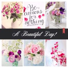 Beautiful Collage, Beautiful Day, Beautiful Flowers, Beautiful Family, Happy Weekend, Happy Day, Creative Inspiration, Color Inspiration, Good Morning Good Night