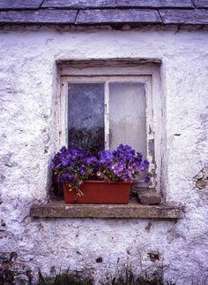 West Cork Window