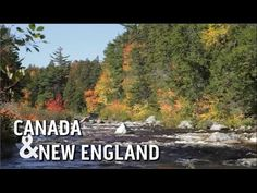 Discover Canada & New England on a Princess Cruises  vacation (V1) STAY CLOSE TO HOME.SEE OUR AMERICAN HERITAGE AND CANADA. lmtparker@att.net