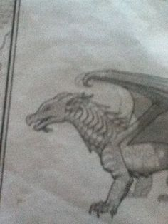 Wings of fire seawing my fav dragon