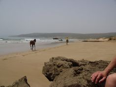 Tamaraght, 5 miles north of Agadir. My paradise beach in Morocco