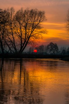 "coffeenuts: "" tulipnight:River bend 2 by piotrekfil on Flickr. """