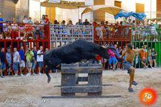 torodigital: Quinta jornada del concurso de ganaderías en Vila...