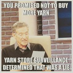 You promised not to buy more yarn.  Yarn store surveillance determined that was a lie.