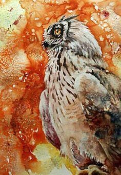 Owl by Gerard Hendriks (stunning)