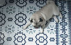 Living With Kids: Ana Bianchi ⋆ Design Mom Penny Tile, Mosaic Tiles, Hex Tile, Hexagon Quilt, Style Tile, English Paper Piecing, Mosaic Patterns, Floor Rugs, Tile Floor