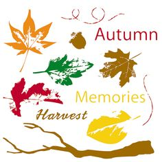Autumn Leaves Stamps - OrientalTrading.com