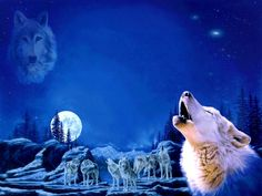 Anime Wolf Pack | WOLF PACK Wallpaper