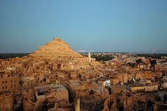 14 Things to Do in Egypt in 2014