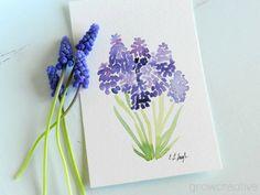 Original Watercolor Painting of Purple Grape Hyacinth Flowers by Elise Engh: Grow Creative
