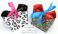 Pretty Petals & Go Wild DSP Stack, Stitched Satin Ribbon (Melon Mambo & Pacific Point) - Pootles 6x6 Week #4 No Cut, No Stick Bag Tutorial