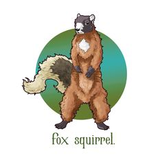 Fox squirrel design Fox Squirrel, Scooby Doo, Graphic Design, Drawings, Artwork, Painting, Fictional Characters, Sketches, Work Of Art