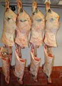 beef carcasses, lamb carcasses, pork carcasses- classes to practice judging for meats CDE