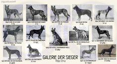 GSD Galerie Der Sieger 1889 - 1924