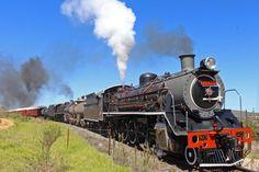 stefan-a-2016 South African Railways, Steam Locomotive, Trains, Vehicles, Train, Vehicle