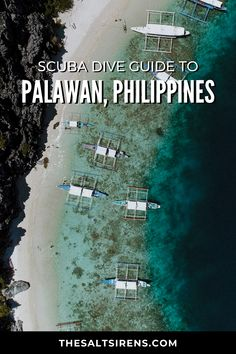 The Ultimate Scuba Dive Guide to Palawan, Philippines - The Salt Sirens Regions Of The Philippines, Philippines Travel Guide, Places To Travel, Travel Destinations, Scuba Diving, Cave Diving, Backpacking Asia, Maui Vacation, Palawan