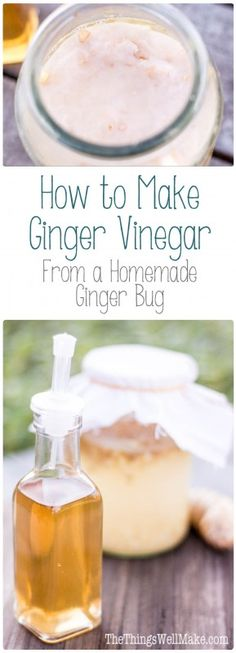Making your own ginger bug is easy, and it can be used for making homemade probiotic sodas and a sweet, mildly acidic, homemade ginger vinegar from scratch.